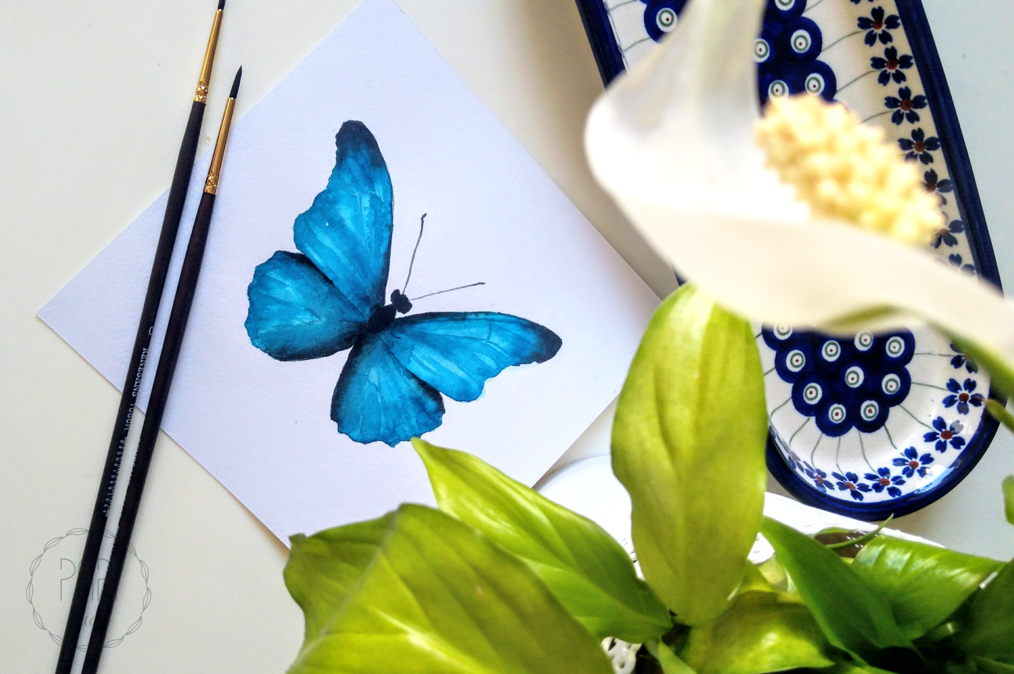 akwarelowy motyl grafika watercolor